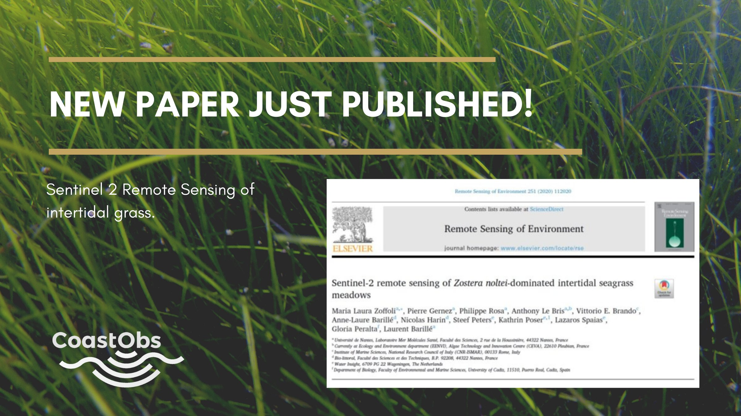 New CoastObs paper in the Remote Sensing Environment Journal!