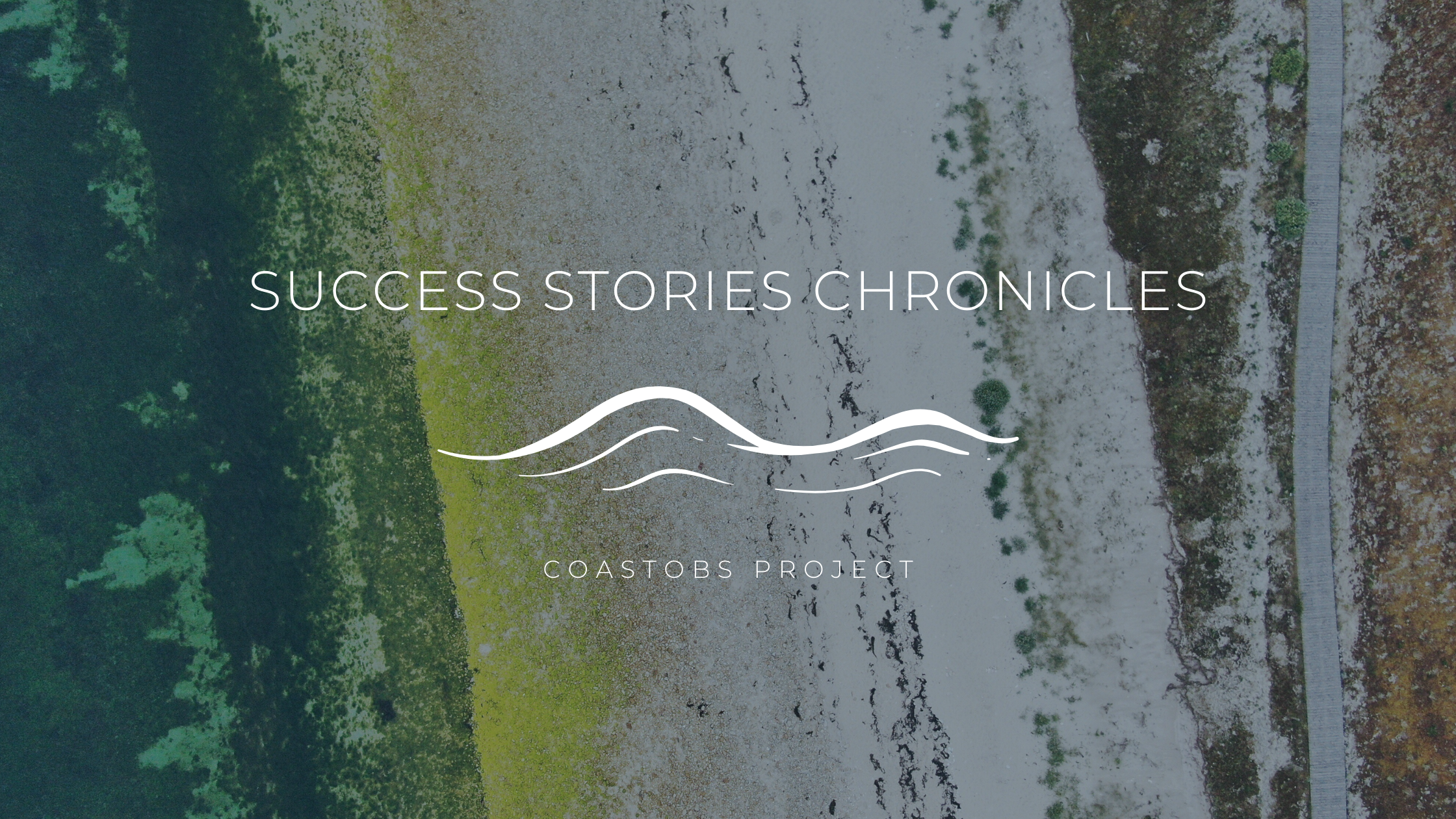 Success Story Chronicles are out!